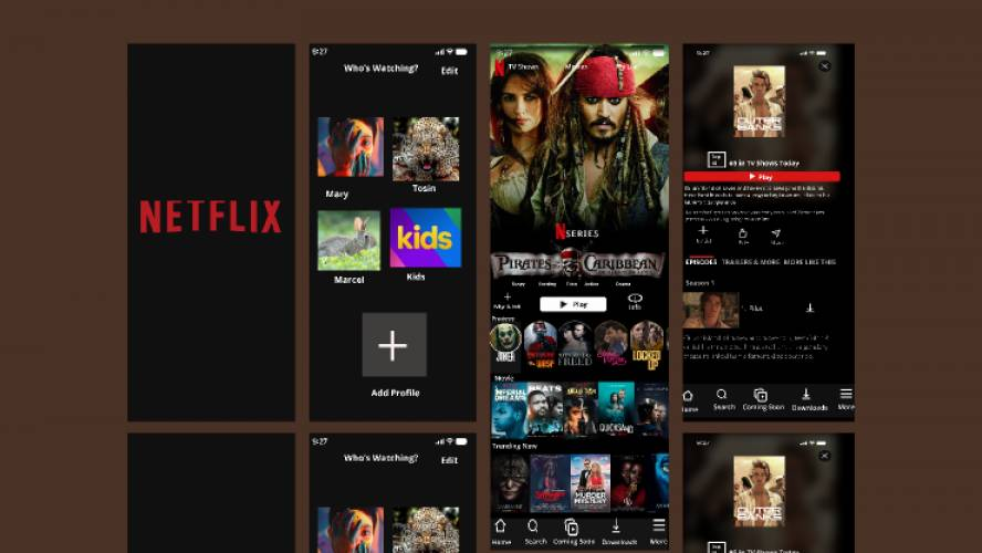 Netflix App Design Figma Template