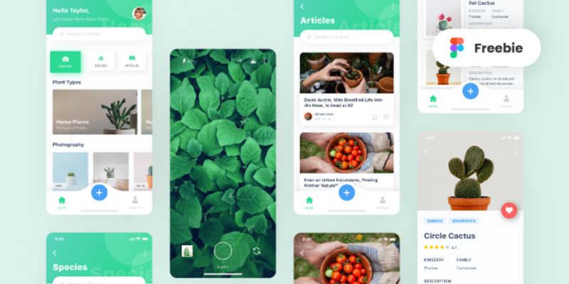 Plant App Freebies